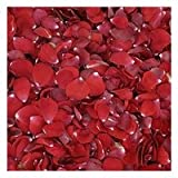 Red Rose Petals - 60 cups wedding rose petals
