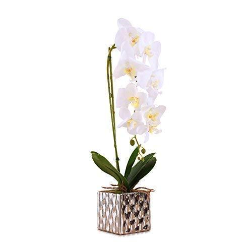 Phalaenopsis Flower Orchid (Artificial Phaleanopsis Arrangement with Vase Decorative Orchid Flower Bonsai (White))