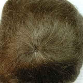 Light Brown Mohair (Kemper Cassidy Mohair Wig - Light Brown 12-13)