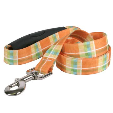 (Yellow Dog Design Madras Orange Dog Leash, Large-1