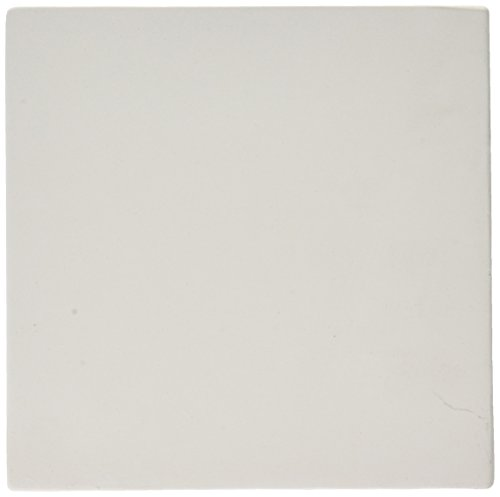 Tile Decorated - AMACO 11333L Decorated Ceramic Tile with Low Fire Glazes, 6