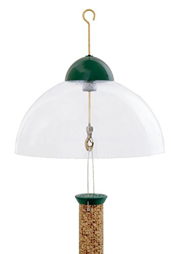 Guard Dome Squirrel - DROLL YANKEES INC Squirrel and Weather Guard Feeder Dome Green 15 INCH