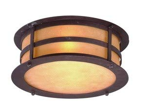 (Troy Lighting C9251NB Aspen - Two Light Outdoor Flush Mount, Natural Bronze Finish with Seeded Amber Etched Glass)
