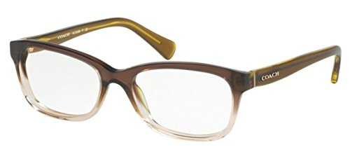 Coach Women's HC6089 Eyeglasses Olive Brown Gradient/Olive - Coach Eyeglasses Mens