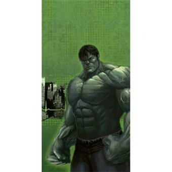 Incredible Hulk Plastic Tablecover