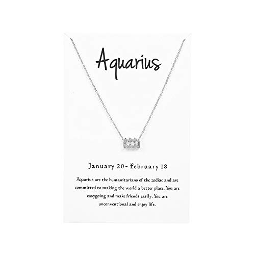 (Kambear 12 Constellation Pendant Necklace Zodiac Sign Astrology Silver Tone Chain Message Card Women Jewelry)