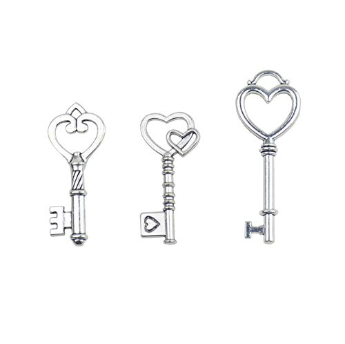 Makhry Mixed 30 Antique Style Vintage Skeleton Keys Heart Shaped Key Craft Keys for Decoration Wedding Party Antique Charms (Antique Silver)