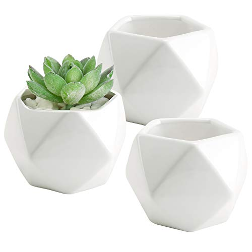 Set of 3 White Ceramic Succulent Plant Pots/Geometric Design Miniature Indoor Planters, 3 Inches