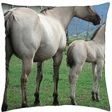 Beautiful Gray Mare and Foal - Throw Pillow Cover Case (18 ()