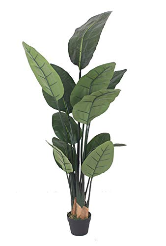 AMERIQUE 5 Feet Bird of Paradise Artificial Tree Silk Plant with Giant Leaves, UV Protection, Nursery Plastic Pot, Feel Real Technology, Super Quality, Green (Artificial Banana Tree)
