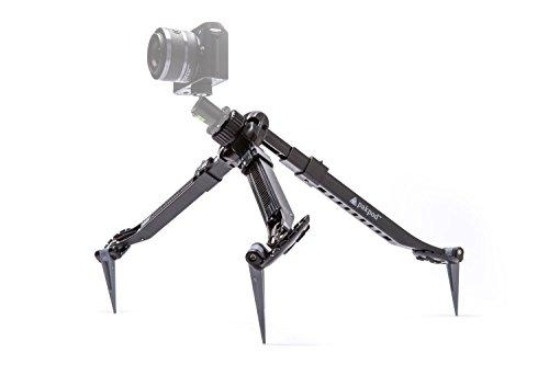 Best Mirrorless Cameras For Underwater Photography - 3