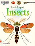 Looking at Insects, David Glover, 0763523542