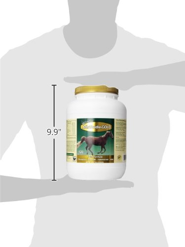 NaturVet ArthriSoothe-GOLD Horse Powder Advanced Joint Formula, 4 lb 7 oz Powder, Made in the USA by NaturVet (Image #4)