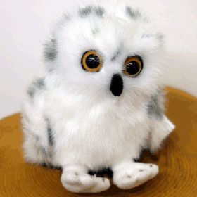 Amazon Com Stuffed Animal House Baby Snowy Owl Everything Else