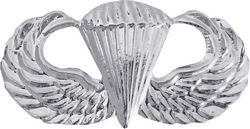 (US Army Paratrooper Wings Lapel Pin (Non-regulation) )