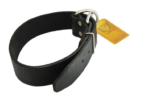 """Dean and Tyler """"B and B"""", Basic Leather Dog Collar with Strong Nickel Hardware – Black – Size 38-Inch by 1-1/2-Inch – Fits Neck 36-Inch to 40-Inch"""