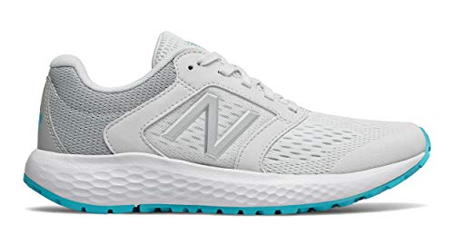 New Balance Women's 520v5 Cushioning Running Shoe, ARTIC FOX/LIGHT ALUMINUM, 8.5 M US