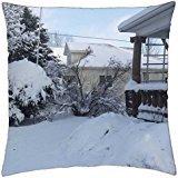 My Homemade Iowa Life: Blizzard - Throw Pillow Cover Case (18