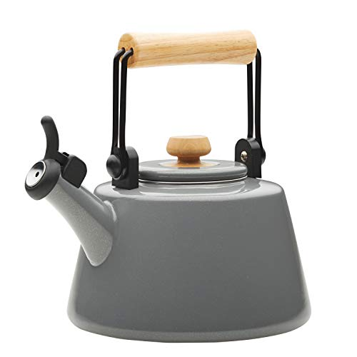 - Rachael Ray 47761 1.5-Qt Enamel on Steel Teakettle, Quart, Gray Shimmer