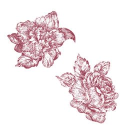 Wallies 25 Red Toile Roses Wallies