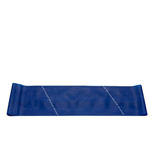 Theraband Extra Heavy Resistance Latex Exercise Band 15 Feet(Length) x 5 inches(Width) Blue (B073SYYKD6) Amazon Price History, Amazon Price Tracker