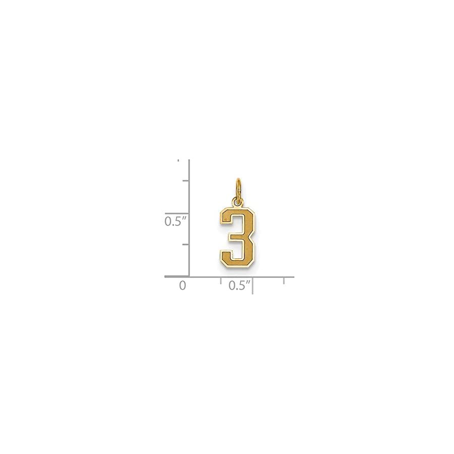Jewels By Lux 14K Yellow Gold Small Satin Number 3 Charm