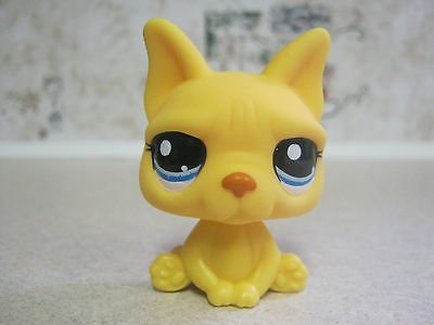 Shop online Littlest Pet Shop LPS Cat #2602 Rare Yellow FRENCH BULLDOG boston terrier PUPPY DOG 2602