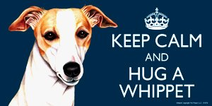 Whippet Dog Gift - 'KEEP CALM' LARGE colourful 4' x 8' MAGNET - High Quality flexible magnet for indoor or outdoor use for your Fridge, Car, Caravan or use on any flat metal surface -Water proof and UV resistant. Car-Pets Ltd