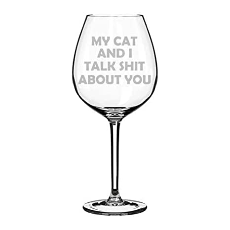 17 oz Stemless Wine Glass Goblet Funny My Cat And I Talk About You