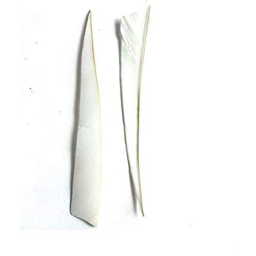 SportFlirt 36pcs/lot DIY Archery 5'' Turkey Fletching for Fletching Arrow High Feather Arrow Quality Hungting ()