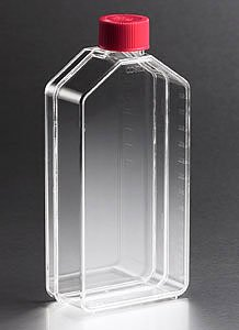 - Corning 3151 Polystyrene 175mL Straight Costar Traditional Neck Cell Culture Flask with Vented Cap (Case of 25)