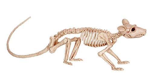 (Crazy Bonez Skeleton - Rat)