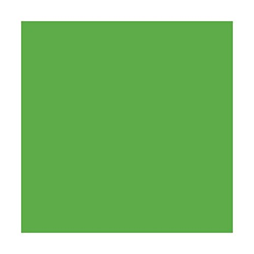 Craft E Vinyl - Glossy Lime Green 12 x 8 ft Roll of Permanent Adhesive-Backed Vinyl for Cricut Cutters, CraftROBO Cutters, Pazzles Cutters, QuicKutz Cutters - CEV1508