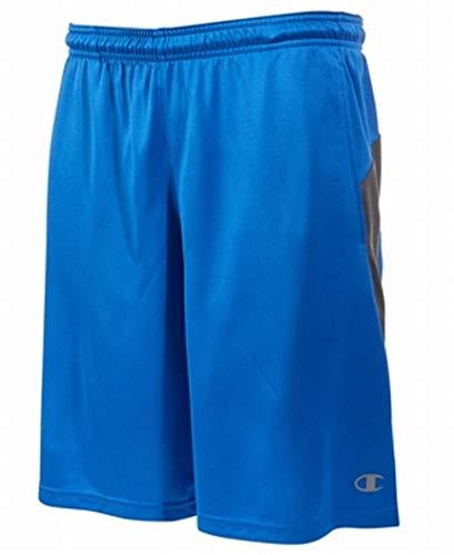Champion Men's Double Dry Select Short, Velvet Evening/Shadow Gray, L ()