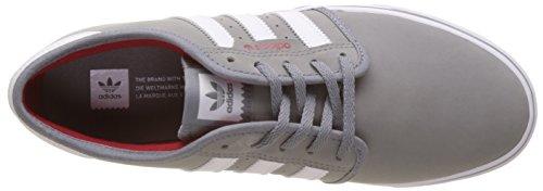 Adidas Herre Seeley SkateboardSko Grå (grå / Fodtøj Hvid / Skarlagen) jHOSmCR