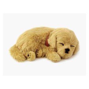 - Perfect Petzzz Golden Retriever Plush Breathable Dog