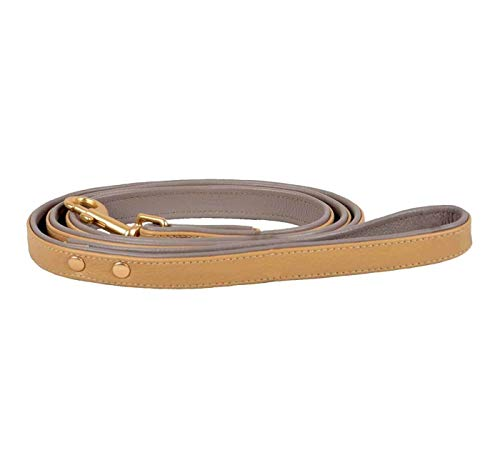 - Boots & Barkley Leather Dog Leash, Caramel Sauce, 5ft Long