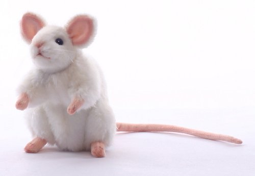 White Mouse Plush - 5