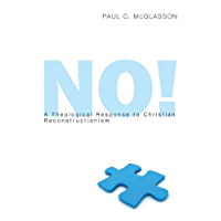No!: A Theological Response to Christian Reconstructionism (English Edition)