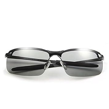 Pequeño árbol Gafas de sol de día y noche gafas polarizadas gafas de sol de color