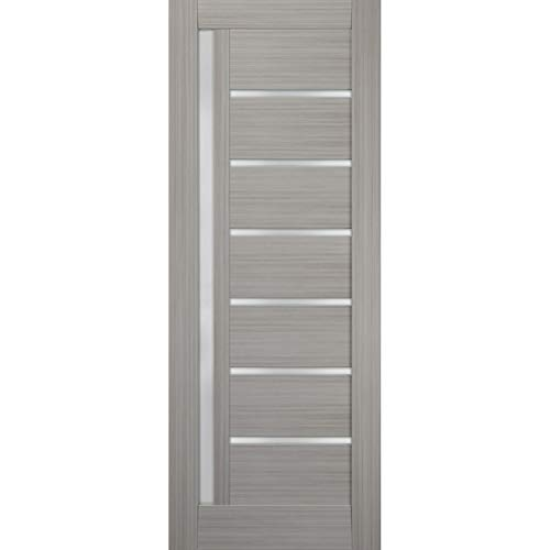 Slab Barn Door Panel Frosted Glass 18 x 80 inches | Quadro 4088 Grey Ash | Sturdy Finished Doors | Pocket Closet Sliding
