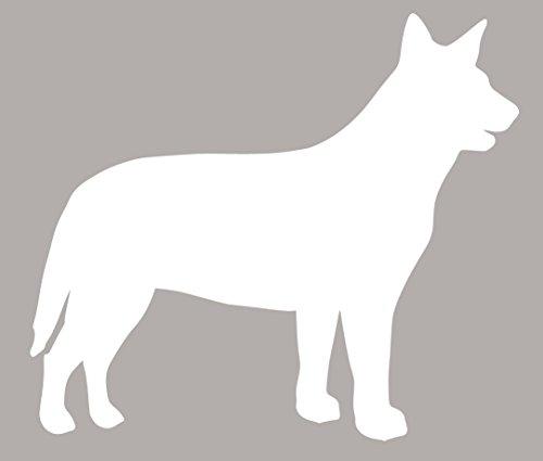 """Australian Cattle Dog, Heeler,Blue Heeler, Sticker Decal vinyl label 5.5""""H X 6.25W or 6.25""""H X 7.25""""W or 11.25""""H X 13""""W (5.5""""Hx6.25""""W, White)"""