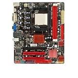 Biostar A880G+ MATX Motherboard