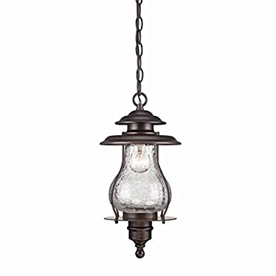 Acclaim 8206ABZ Blue Ridge Collection 1-Light Outdoor Light Fixture Hanging Lantern, Architectural Bronze