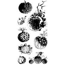 Inkadinkado Pumpkin - Inkadinkado Clear Seasonal Stamps 4-Inch by 8-Inch Sheet, Pumpkin Galore