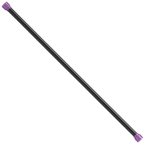 Body-Solid Tools BSTFB6 Weighted Exercise Bar, Workout Fitness Bar for Toning, Core, Balance, Pilates, Yoga, Cross-Training and Physical Therapy, 6 Lbs