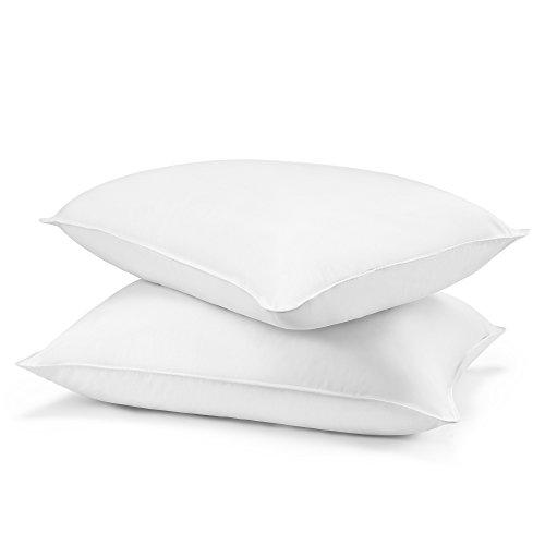 Beautyrest Soft Pillow (Beautyrest Asthma and Allergy Friendly Down Alternative Pillow, Two Pack, Queen)