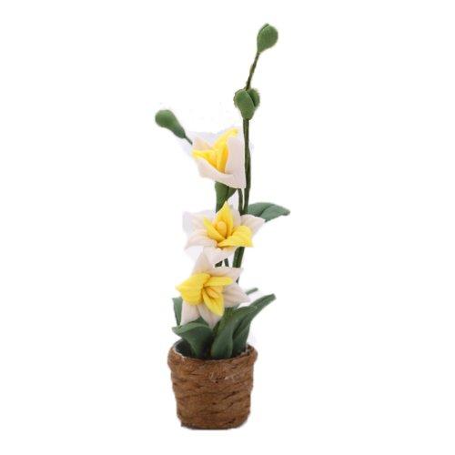 Hecha A Mano Exhibició n De La Flor Casa De Muñ ecas En Miniatura Orquí dea Blanca MagiDeal