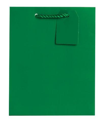 Jillson Roberts Bulk Medium Gift Bags Available in 19 Colors, Green Matte, 120-Count (BMT913)