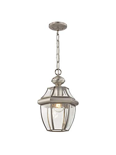 - Livex Lighting 2152-91 Monterey 1-Light Outdoor Hanging Lantern, Brushed Nickel